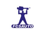 FCS Struts Suspension Strut and Coil Spring Assembly  Front Left