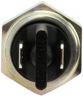Eurospare Steering Swivel Pin  Upper