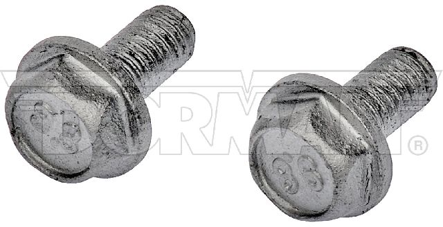 Motormite Catalytic Converter Heat Shield Bolt Set
