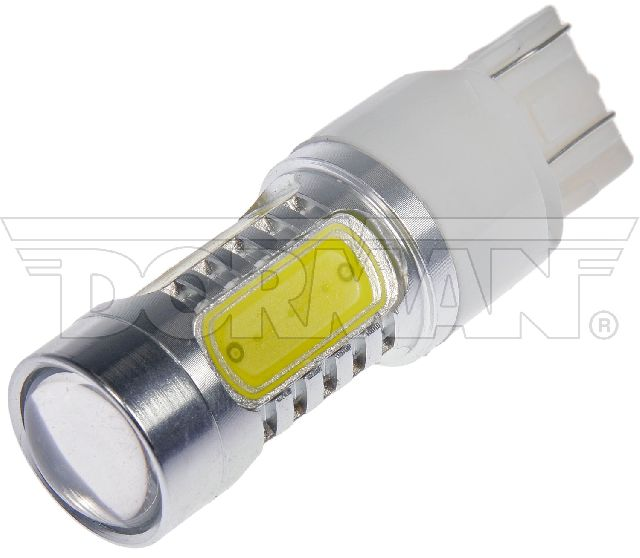 Motormite Tail Light Bulb