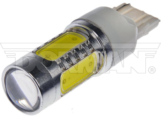 Motormite Back Up Light Bulb