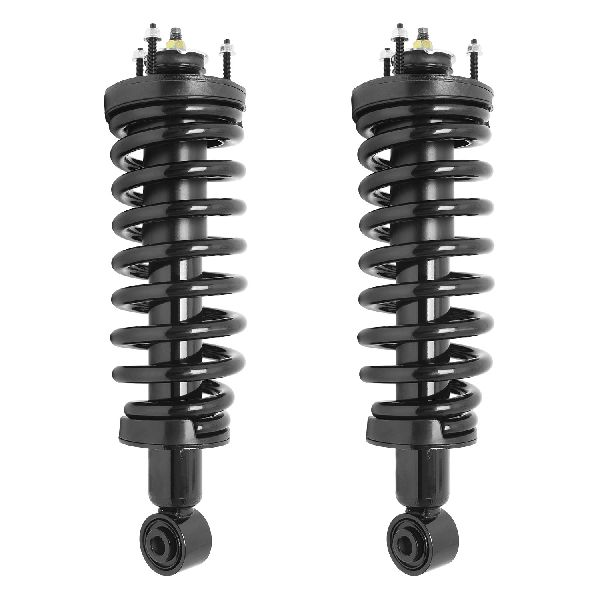 Unity Suspension Strut Assembly Kit  Front